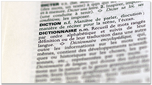 Article Dictionnaire